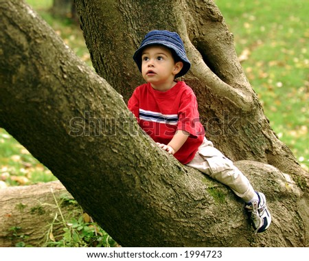 """Tiny tree-climber, sitting in """"Y"""" of branches, contemplating his next move. - stock photo"""