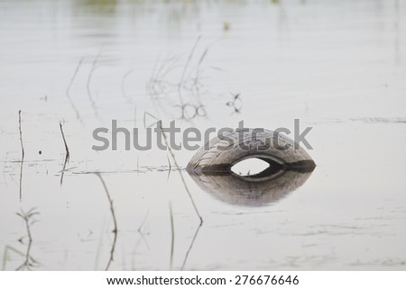 Tire in the water - stock photo