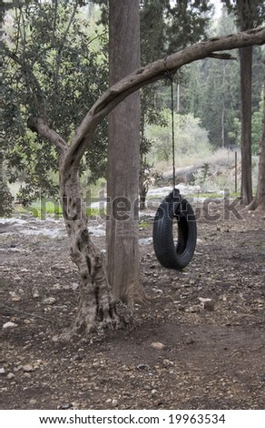 tire swing on a tree in the forest - stock photo