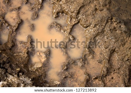 tire tracks in the mud - stock photo