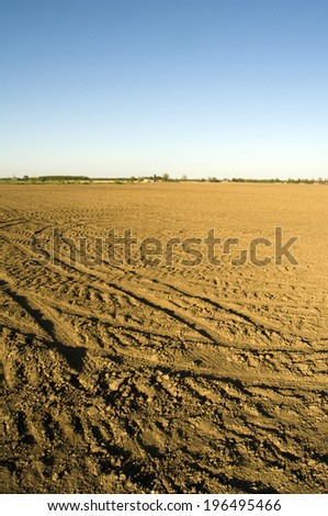 Tire tracks scattered across a field of dirt.