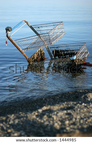 tired of shopping? shopping cart in the water