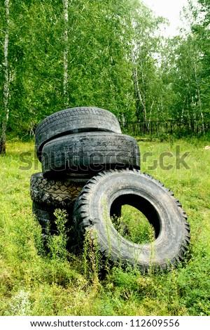 tires from vehicles in the forest - stock photo