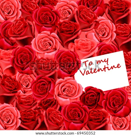 To my Valentine card on a bed of red roses - stock photo