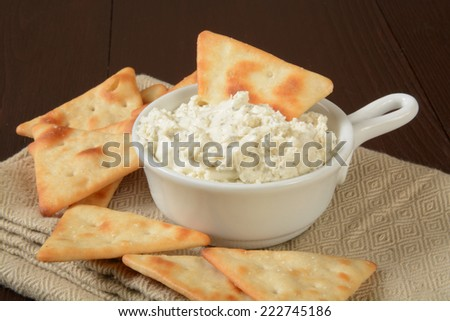 toasted pita chips with a cream cheese dip - stock photo