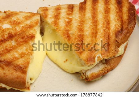 Toasted sandwich with melted cheese. - stock photo