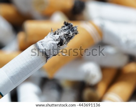 Tobacco and cigarette butts - stock photo