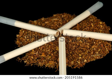 Tobacco and cigarette tubes, isolated on black - stock photo