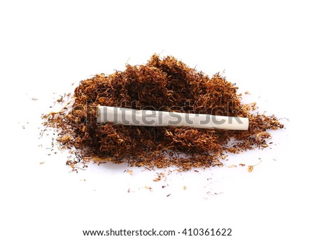 tobacco and cigarettes isolated on white background - stock photo