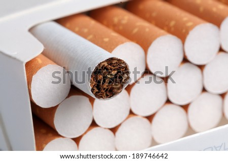 Tobacco in cigarettes with brown filter in the box close up