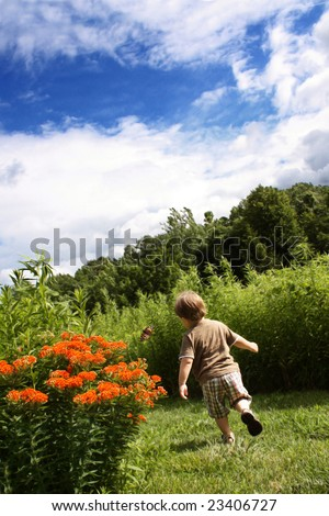 Toddle Boy Chasing Butterfly - stock photo