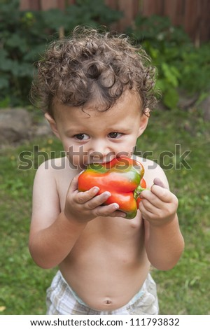 Toddler biting into a bell pepper - stock photo