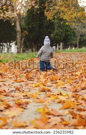 toddler boy in fall with a basket - stock photo