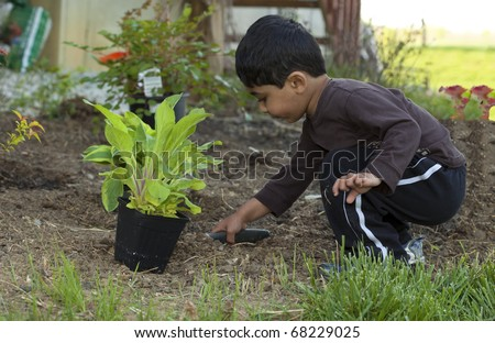 Toddler Digging Earth to Help Plant a Shrub - stock photo