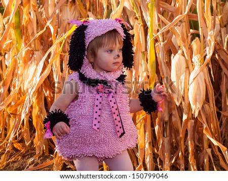 Toddler dressed up in cute costumes at the corn maze. - stock photo