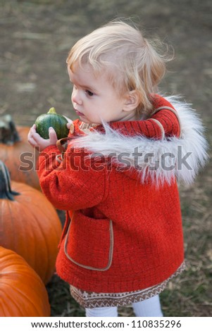 Toddler girl picking pumpkins - stock photo