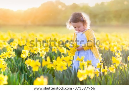 Toddler girl playing in daffodil flower field. Child gardening. Kid picking flowers in the backyard. Children working in the garden. Kids taking care of plants. First spring blossoms. Easter egg hunt. - stock photo