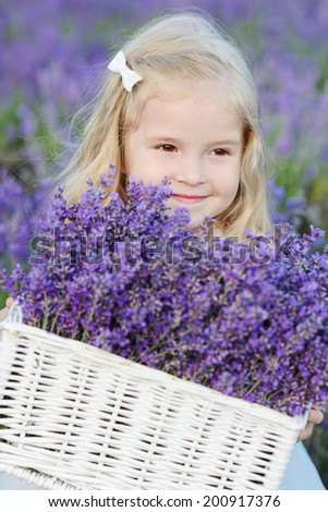 toddler girl with lavender in field - stock photo