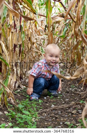 toddler playing on corn field