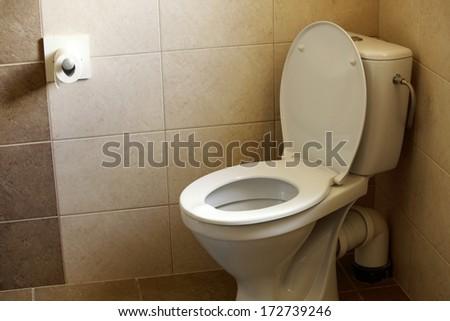 toilet bowl, home flush toilet and paper - stock photo