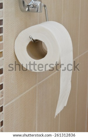 toilet paper roll in toilet