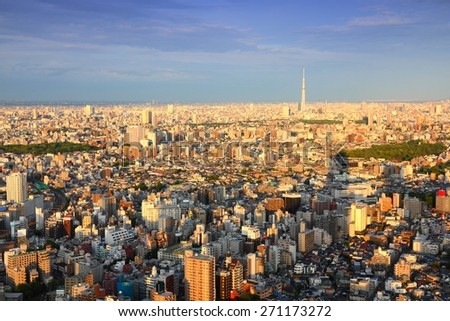 Tokyo aerial view - city skyline with Bunkyo and Taito wards. Sunset light. - stock photo