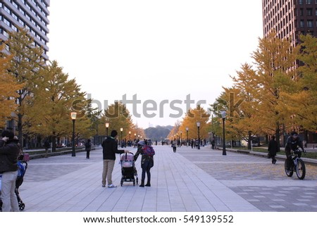 Tokyo - December 4th, 2016: Electric lamp and gingko with changed color of leaves line the wide walkway. People walk to head to a park with winter coat in the cold.