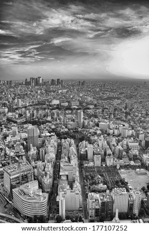 Tokyo skyline, Japan. Wonderful aerial view of city hi-rise skyscrapers. - stock photo
