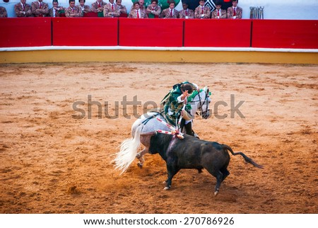 """TOMAR, PORTUGAL - OCTOBER 24: Cavaleiro on the horse fight with the bull and stabbing """"bandarilha"""" to the bull in portuguese style bullfighting in Tomar on October 24, 2010 - stock photo"""