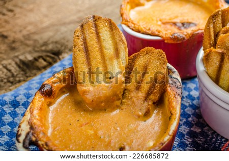 Tomato and cheese dip baked with crispy garlic panini toast with herbs - stock photo