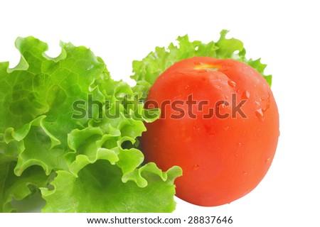 tomato and lettuce - stock photo