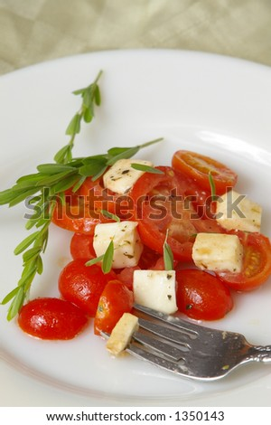 Tomato appetizer on a white plate with green background. - stock photo