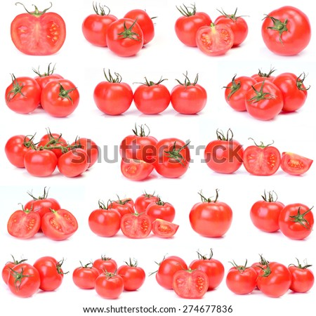 Tomato collection - stock photo
