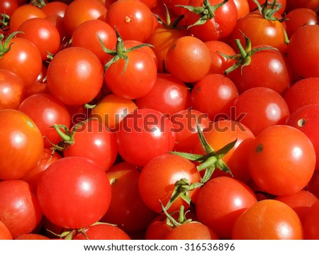 "Tomato cultivar ""Cherry"" close-up"