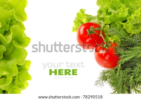 Tomato, dill and salad leaf isolated on white background