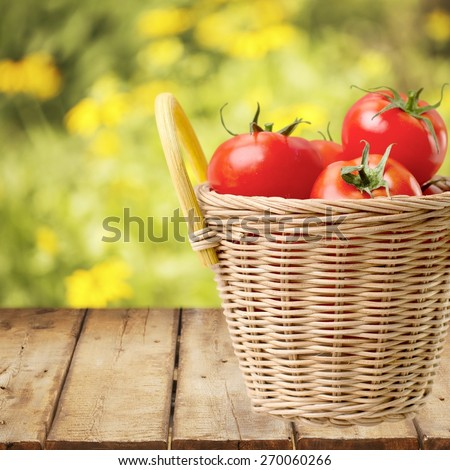 Tomato. Fresh Organic Tomatoes - stock photo