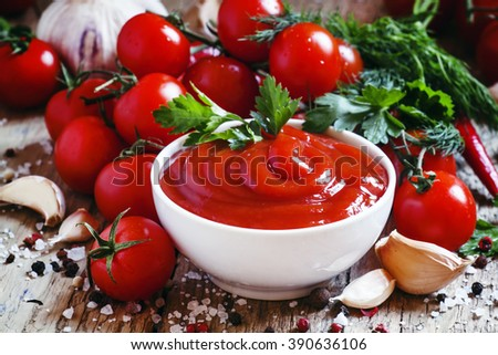Tomato sauce with herbs and spices, selective focus - stock photo