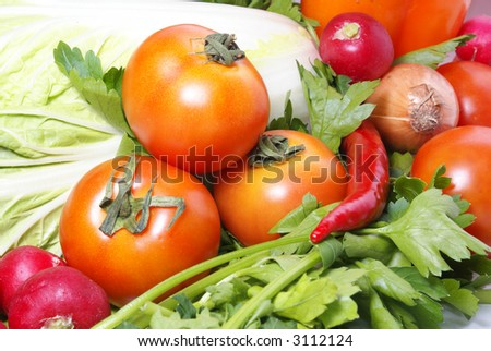 Tomatoe parsley cabbage onion and other vegetables