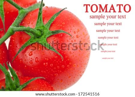 Tomatoes - stock photo