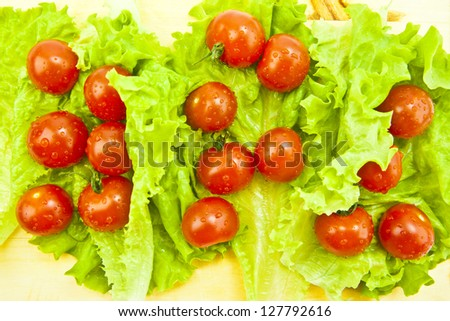 Tomatoes and cherry on the green salad background