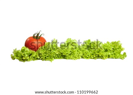 Tomatoes and lettuce on the white background. - stock photo