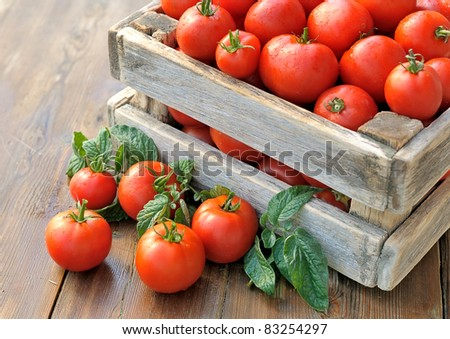 Tomatoes in a box. Ripe tomatoes in a container. - stock photo