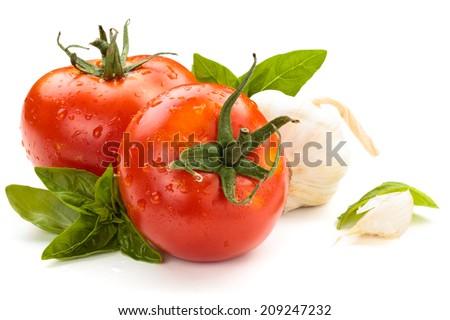 Tomatoes on white background. - stock photo
