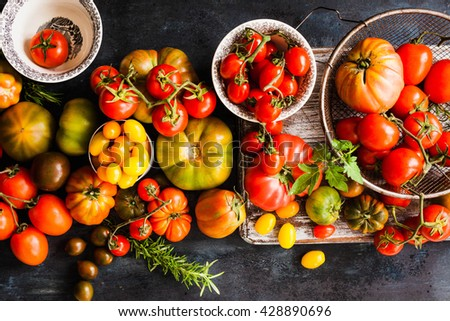 Tomatoes varieties colorful dark background. Top view. - stock photo