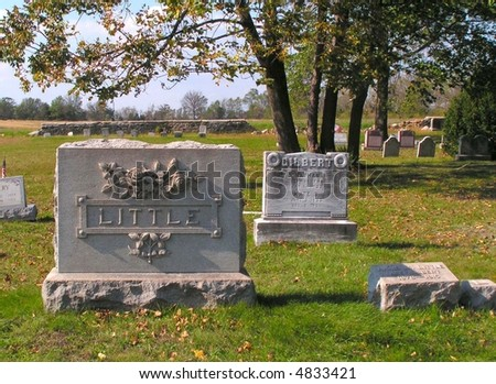 Tombstone with ornate roses and leaves in a peaceful country cemetery. - stock photo