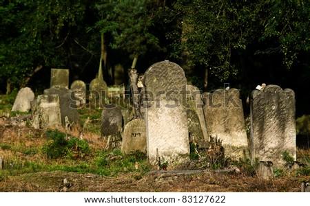 Tombstones - Jewish cemetery in Otwock (Karczew-Anielin), Masovian Voivodeship, Poland. - stock photo