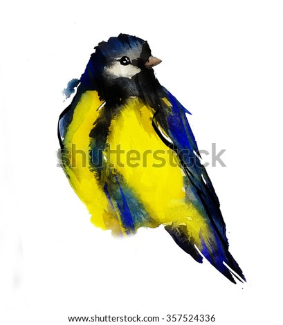 tomtit watercolor