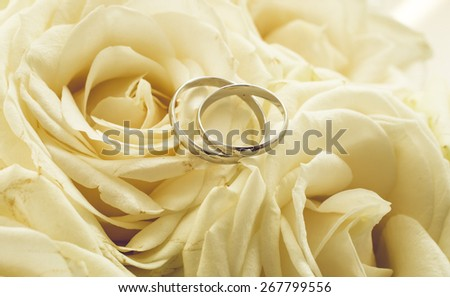 Toned background for wedding with rings lying on white roses - stock photo