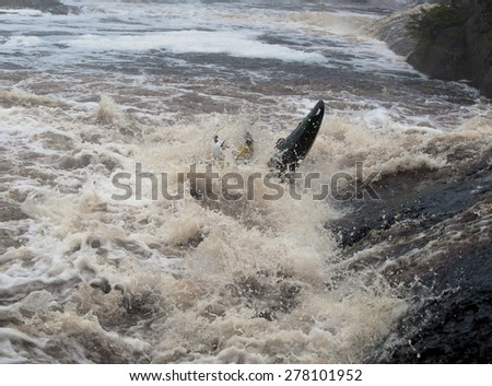 Toned image kayaker fighting with rough river - stock photo