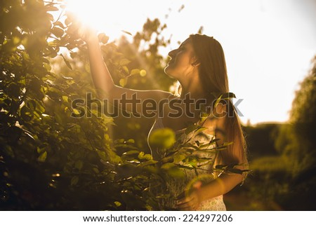 Toned photo of brunette woman picking apple from top of tree - stock photo